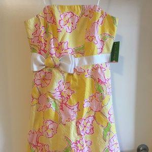 Lilly Pulitzer Amberly Dress